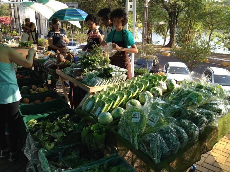 organica alimentos feira organica londrina